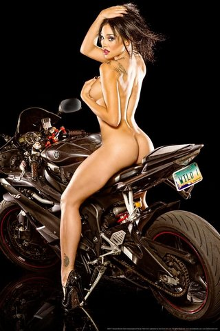 Wild One by Daveed Benito Poster 24X36